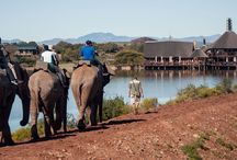 South Africa / South Africa - it's places, people, culture and beauty