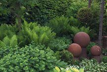 kert (garden) / gardens, flowers, trees