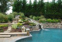 Design - Woodland Swimming Pond