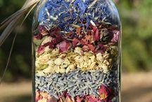 flores secas en botellas