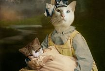 Cats paintings