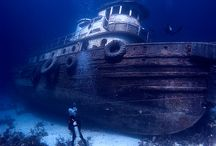 Wreck diving / The best dive wreck