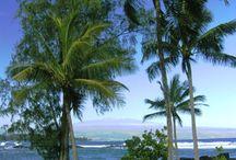 Hawaii / by Lani Love