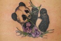 Panda / by Lauri Martin