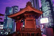Japonia / Mara Study Turism | Tabere Educationale | www.mara-study.ro