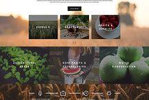 홈페이지 및 블로그