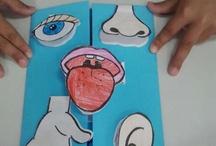 cinco sentidos primaria