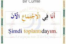 Education Turki Arab