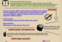 Curriculum vitae / curriculum infografico