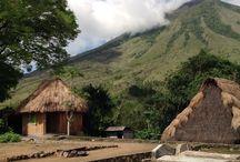 Vernacular Architecture: Indonesia