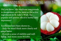 MANGOSTEEN - Best thing since sliced Bread!!!*