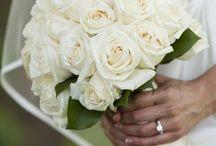 White / White wedding, white flowers, white