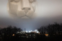 Penn State / by Deb Ammer