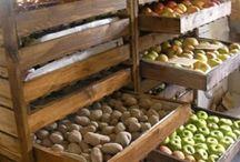depozitare legume