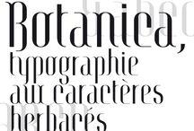 Christophe Alglave - Typographie / Botanica Création d'une police de caractère