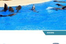 Canary Islands Trip