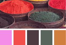 Color Palette / by Kendra Willard