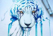 tygrysy , lwy i inne kotowate <3