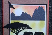 Amy Design Afrika