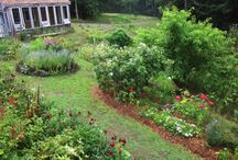Our Catskills Garden / We grow much of the food we eat in our garden.