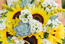 white & sunflowers