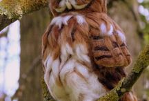 OWLS / by Sarah Gallimore