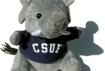 CSUF Accessories / by Titan Shops