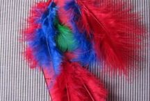 Parrot craft idea / this page has a lot of free Parrot craft idea for kids,parents and preschool teachers.
