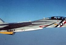 The F-14 Tomcat - The early years