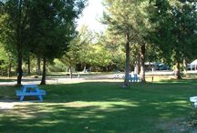 Oregon campgrounds