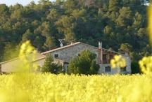 Turismo rural / Masia de Agroturismo totalmente aislada y rodeada de campos de cereales y bosques de encinas,pinares y robles, situada en el centro de Cataluña,es un exelente punto para conocer la Cataluña interior.
