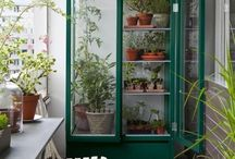 Växtskåp
