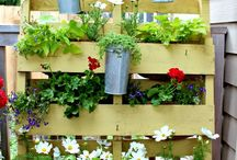 Garden & outdoor / DIY home projects and ideas for the house and garden