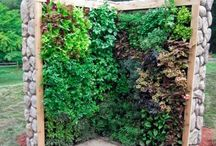 Cool garden projects