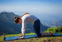 Yoga 4 back/neck/hip/shoulder pain