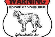 Goldendoodle Signs and stuff / Dog signs for Goldendoodle and other dog stuff. http://www.signswithanattitude.com/dog_signs/goldendoodle.html