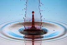 Liquida / La perfezione e l'arte in natura