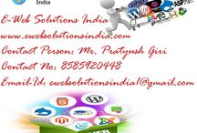 Web Designing Services Delhi /  E-Web Soutions India a professional website designing company from India offers  affordable website designing of websites and web pages.