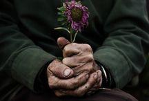 Lovely / by Melissa Nauslar