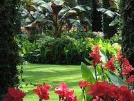 jardín subtropical
