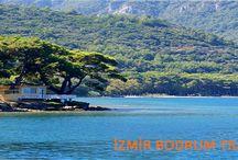 İzmir Bodrum Transfer