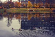 Ольгинский пруд (Санкт-Петербург)