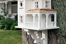 Bird's feeders and houses