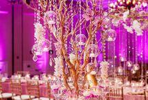 Shari Wedding / by Melissa Rosewarne