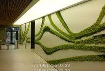 Design & Art - озеленение