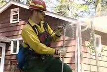 Bush or wild fire protection videos