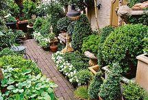 kert ötletek