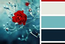 Lovely Colour Combos / A selection of the nicest colour combinations we've spotted on our design travels.