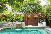 Pool / Outdoor