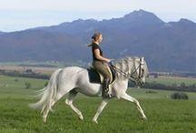 Atlı bayan gifs
